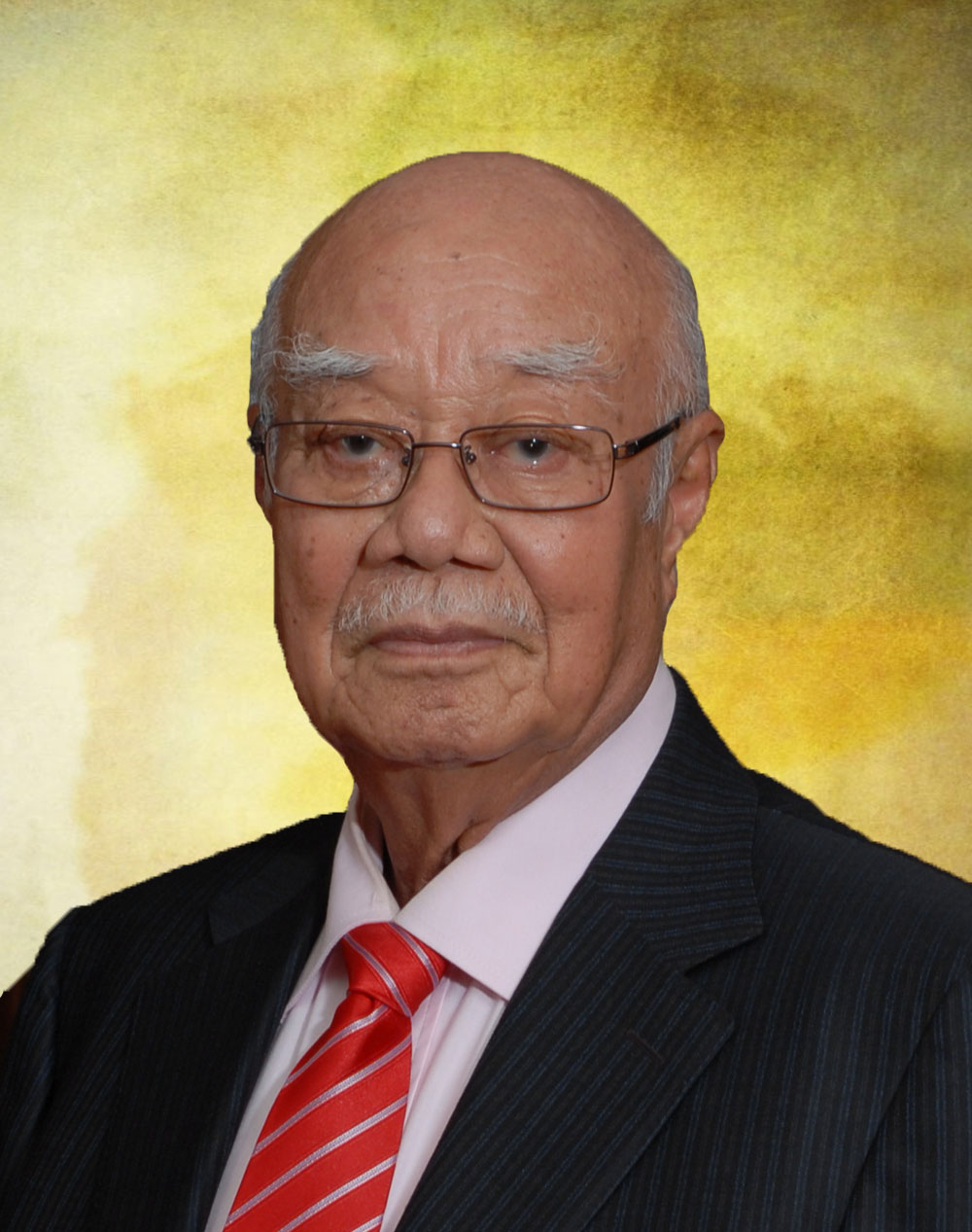 tan sri md noor